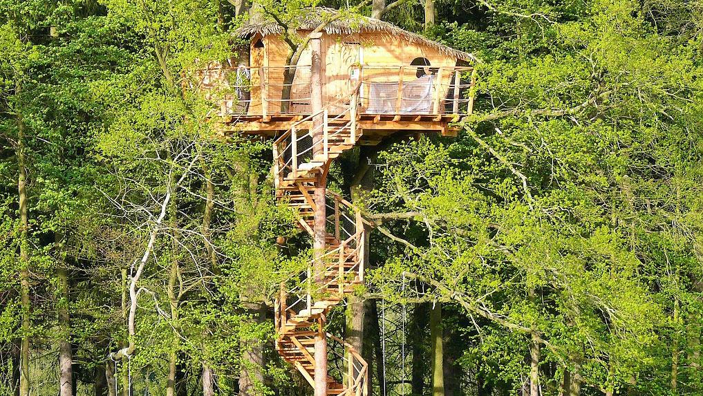 Green valley resort cabana arbol en chequia