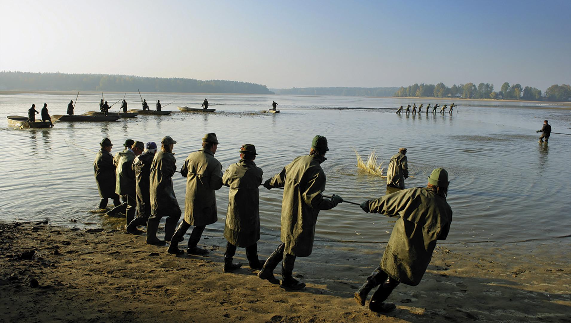 Pesca de carpa en Chequia.