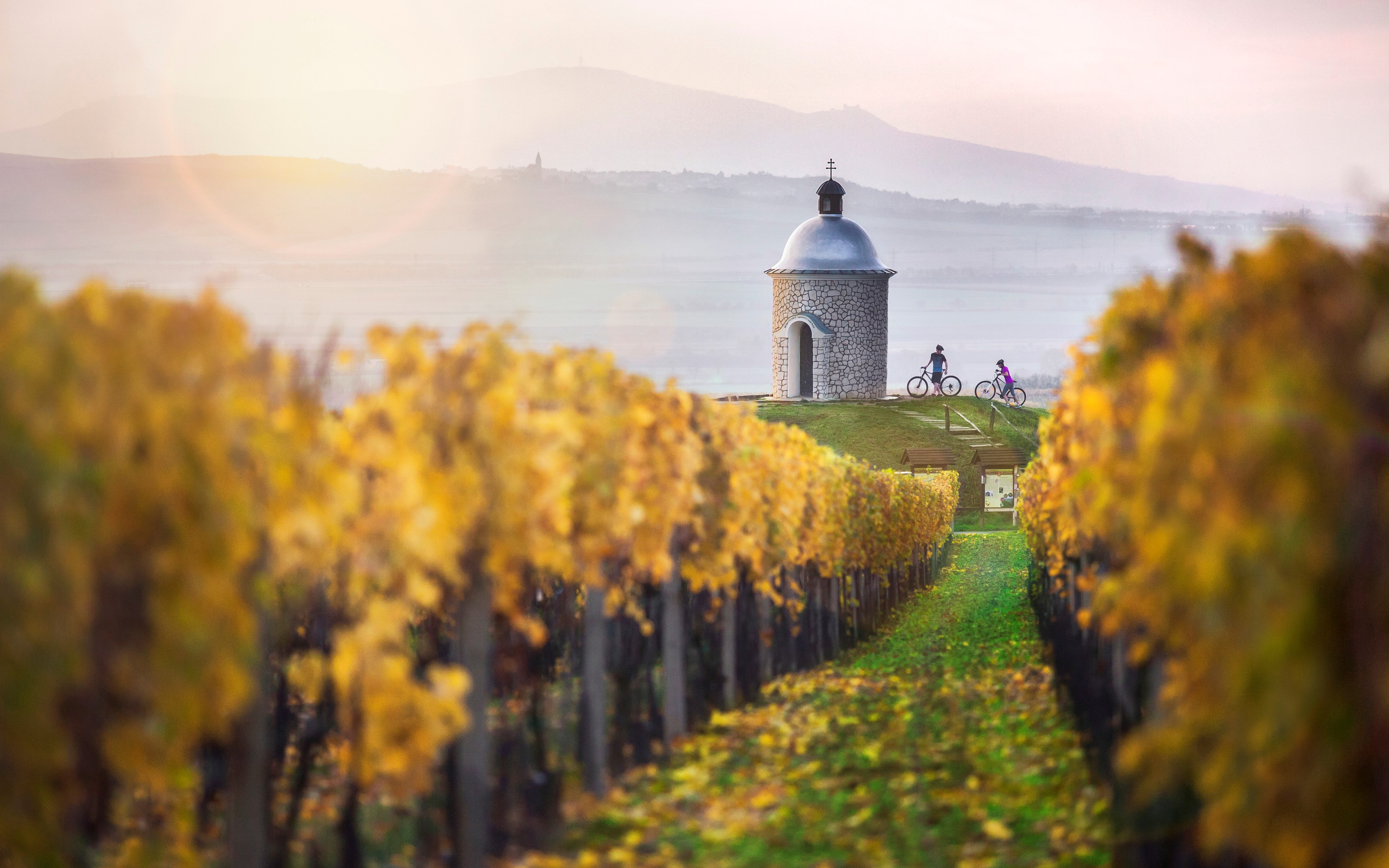 Arquitetura do vinho, o jeito tcheco de vinícolas receberem visitantes